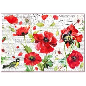 Decoupage grandi superfici - kit 6 fogli 33 x 48 Botanic