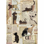 DFSA4317_categoria_cats_decoupage